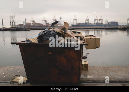 Seagulls perching on waste container - Stock Photo