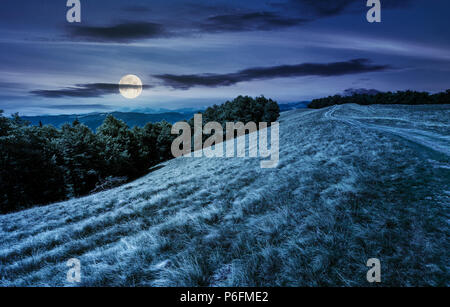 mountain road in to the beech forest at night in full moon light. Svydovets mountain ridge in the distance. stunning landscape of Carpathian mountains - Stock Photo