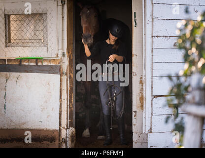 Young pretty girl - prepring her horse for riding - Stock Photo