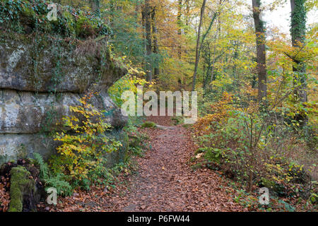 Mullerthal trail Luxembourg hike in autumn