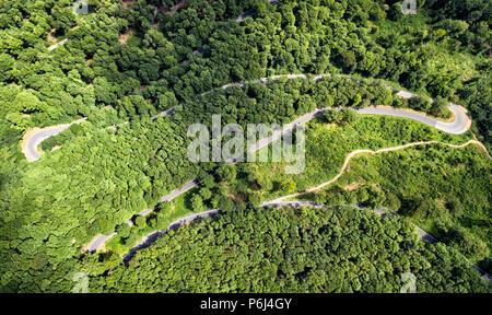 Forrest path on Sljeme - Croatia - Stock Photo