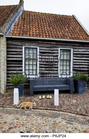 A cat walks by wooden shoes in front of an old house with shiplap siding in Vesting Bourtange, The Netherlands. - Stock Photo