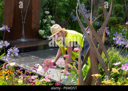 Hampton Court, UK. 1st July, 2018. Last minute preparations at a garden at the RHS  Hampton Court Palace Flower Show. Credit: Ellen Rooney/Alamy Live News - Stock Photo
