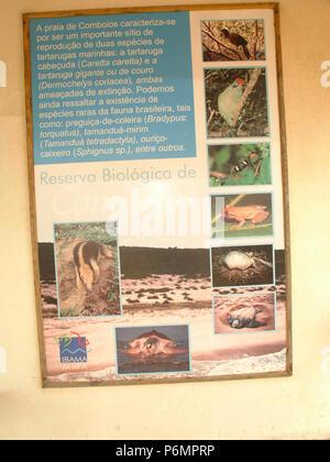 Protective Base, Sea Turtles, Comboios Biological Reserve, Espírirto Santo, Brazil. - Stock Photo