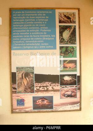 Protective Base, Sea Turtles, Comboios Biological Reserve Espírirto Santo, Brazil. - Stock Photo