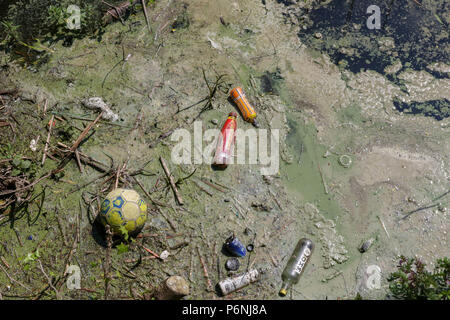 Freshwater pollution with plastic bottles and other items floating in a lake as an algal bloom gets underway. - Stock Photo