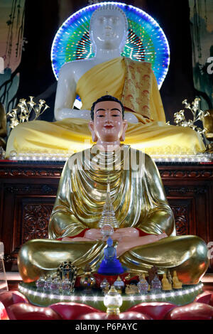 Chua Tu An Buddhist temple. Buddha statue.  Saint-Pierre en Faucigny. France. - Stock Photo