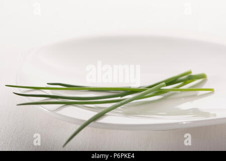 Close up of some scapes of  the common green herb chives, on a white plate against a white background - Stock Photo