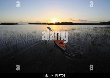 Woman kayaking at sunrise on Nine Mile Pond in Everglades National Park, Florida. - Stock Photo