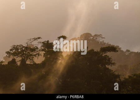 Drizzling rain over the premontane humid tropical rainforest in Burbayar nature reserve, Panama province, Republic of Panama. - Stock Photo