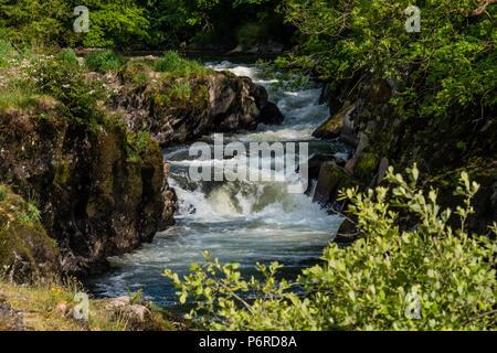 Cenarth Waterfalls Carmarthenshire Wales - Stock Photo
