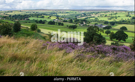 View from Baildon Moor in Yorkshire, England. Rombalds Moor can be seen in the distance. - Stock Photo
