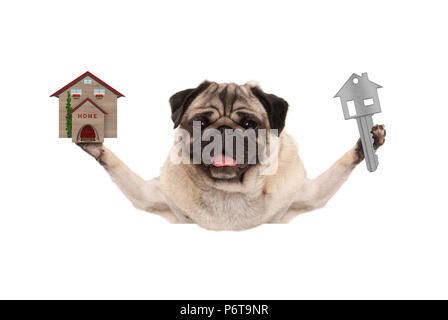 smiling happy pug puppy dog holding up house key and miniature house, isolated on white background - Stock Photo