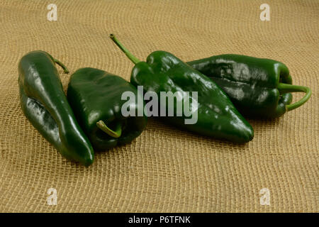 four raw whole freshly rinsed poblano peppers on burlap - Stock Photo