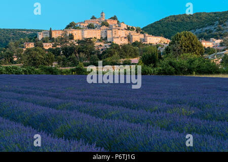 Europe, France, Provence, Banon with lavender field - Stock Photo