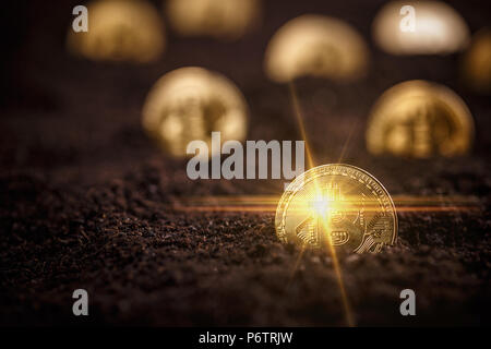 Golden Bitcoins. New virtual money in ground - Stock Photo