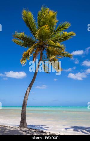Dominican Republic, Punta Cana, Cap Cana beach