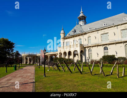 Argentina, Buenos Aires Province, Tigre, View of the Municipal Museum of Fine Art. - Stock Photo