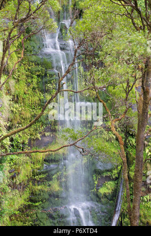 Erskine Falls, Great Otway National Park, Lorne, Great Ocean Road, Victoria, Australia - Stock Photo