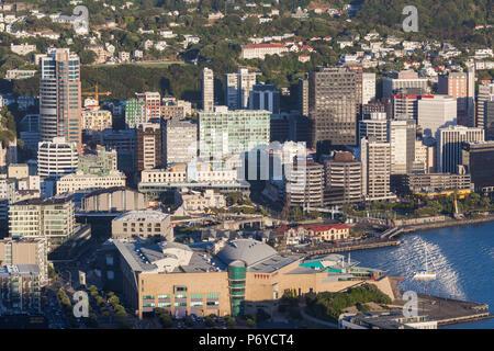 New Zealand, North Island, Wellington, elevated city skyline from Mt. Victoria, dawn - Stock Photo