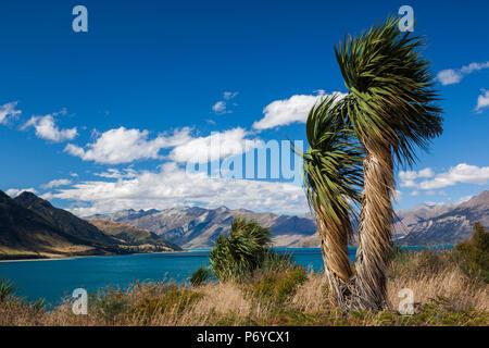 New Zealand, South Island, Otago, Wanaka-area, Lake Hawea - Stock Photo