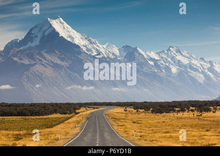 New Zealand, South Island, Canterbury, Aoraki-Mt. Cook National Park, Mt. Cook and Highway 80 - Stock Photo