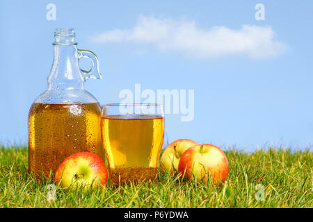 An ice cold flagon of fresh apple cider with pint glass amongst green grass in an orchard on a hot summers day. - Stock Photo