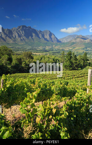South Africa, Western Cape, Franschhoek, view over Town and Valley - Stock Photo