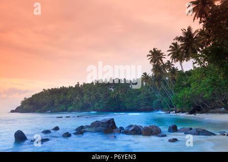 Sri Lanka, South Coast, Mirissa, Beach - Stock Photo
