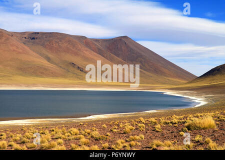Laguna Miniques is the lake next to laguna Miscanti, located in the altiplano of northern Chile - Stock Photo