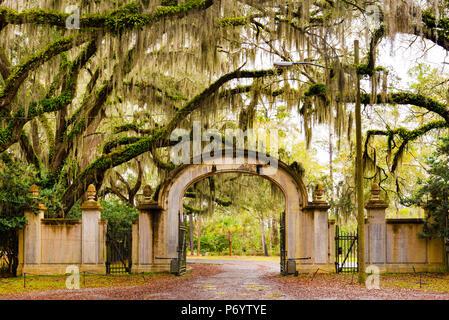 USA, Georgia, Savanah, Gateway and tree lined drive way at the Wormsloe Plantation - Stock Photo