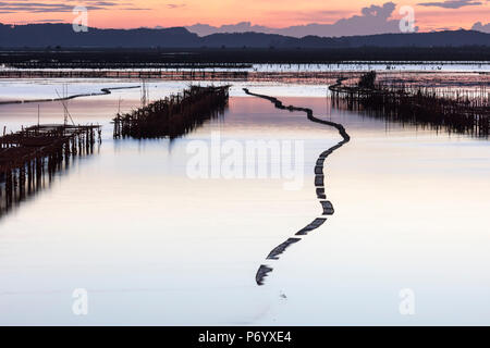 Oyster beds in the shape of a snake at sunset, Halong Bay, Quang Ninh Province, North-East Vietnam, South-East Asia - Stock Photo