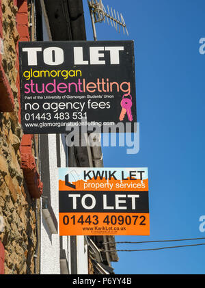 'To let' signs on terraced houses in Treforest, Pontypridd, Wales, advertising rooms to let to students - Stock Photo
