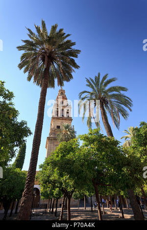 Spain, Andalucia, Cordoba, Mezquita Catedral (Mosque - Cathedral) (UNESCO Site) - Stock Photo