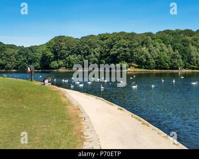 Waterloo Lake at Roundhay Park Roundhay Leeds West Yorkshire England - Stock Photo