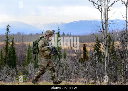 Sgt. 1st Class Nicholas Hudson, 6th Brigade Engineer Battalion, 4th Infantry Brigade Combat Team (Airborne), 25th Infantry Division, moves into position for a live-fire assault as part of Oak Edge, May 10, 2017, in the Donnelly Training Area near Fort Greely, Alaska. (John Pennell/U.S. Army) - Stock Photo