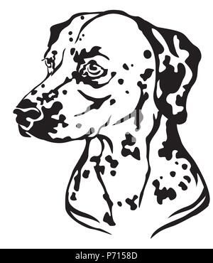 Decorative portrait in profile of Dog Dalmatian, vector isolated illustration in black color on white background. Image for design and tattoo. - Stock Photo