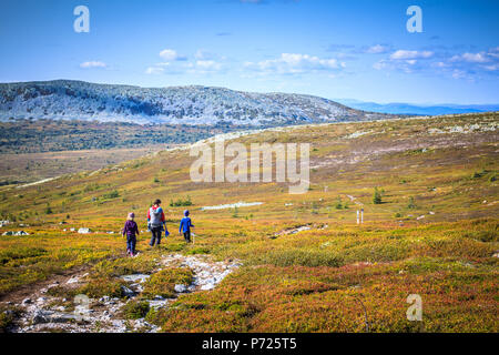 Family of four people walking through vast empty mountain landscape of Trysil, Norway. Orange fall colours, fair weather. - Stock Photo