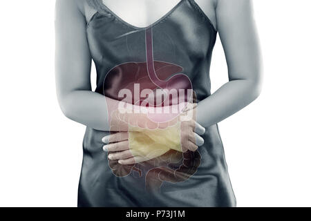 The photo of internal organs is on the womens body against gray the photo of internal organs is on the womens body against gray background viscera on ccuart Images