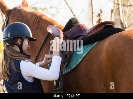 Young pretty girl preparing horse for riding - Stock Photo