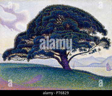 . The Bonaventure Pine  1893 184 Paul Signac, 1893, The Bonaventure Pine, oil on canvas, 65.7 x 81 cm, Museum of Fine Arts, Houston - Stock Photo