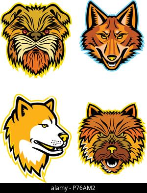 Mascot icon illustration set of heads of terriers and wolves or canids, like the Affenpinscher dog or  Monkey Terrier, coyote, wolf, coydog or wild do - Stock Photo