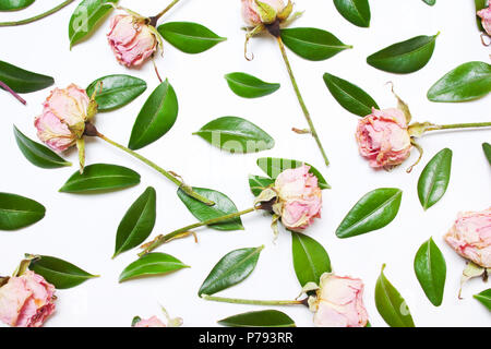 The pattern, composition of green leaves and pink flowers, roses on a white background. Top view of a flat - Stock Photo