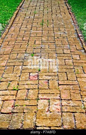 A winding brick path among green grass. - Stock Photo