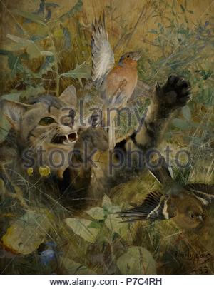 Bruno Liljefors (1860-1939). Swedish painter. Five animals studies in one frame. A Cat and a Chaffinch, 1885. National Museum. Stockholm. Sweden. - Stock Photo