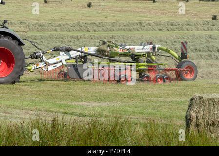 Dartmoor, Devon, England, UK Haymaking on a Devonshire farm using a Claas Liner swath laying machine - Stock Photo