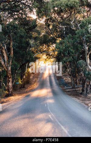 Empty road, Sevenhill, Clare Valley, South Australia, Australia - Stock Photo