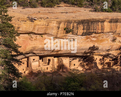 Spruce Tree House ruins, Chapin Mesa, Mesa Verde National Park, Colorado. - Stock Photo