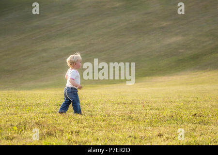 Child, baby girl, toddler, walking alone on a large meadow in late summer sun, end of August. - Stock Photo