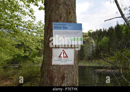 Tristacher See Alter See Lienz Osttirol - Stock Photo